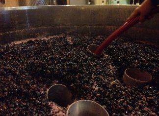 Die Saignee ist der Saftabzug beim Wein. Der Rotwein wird Intensiver.
