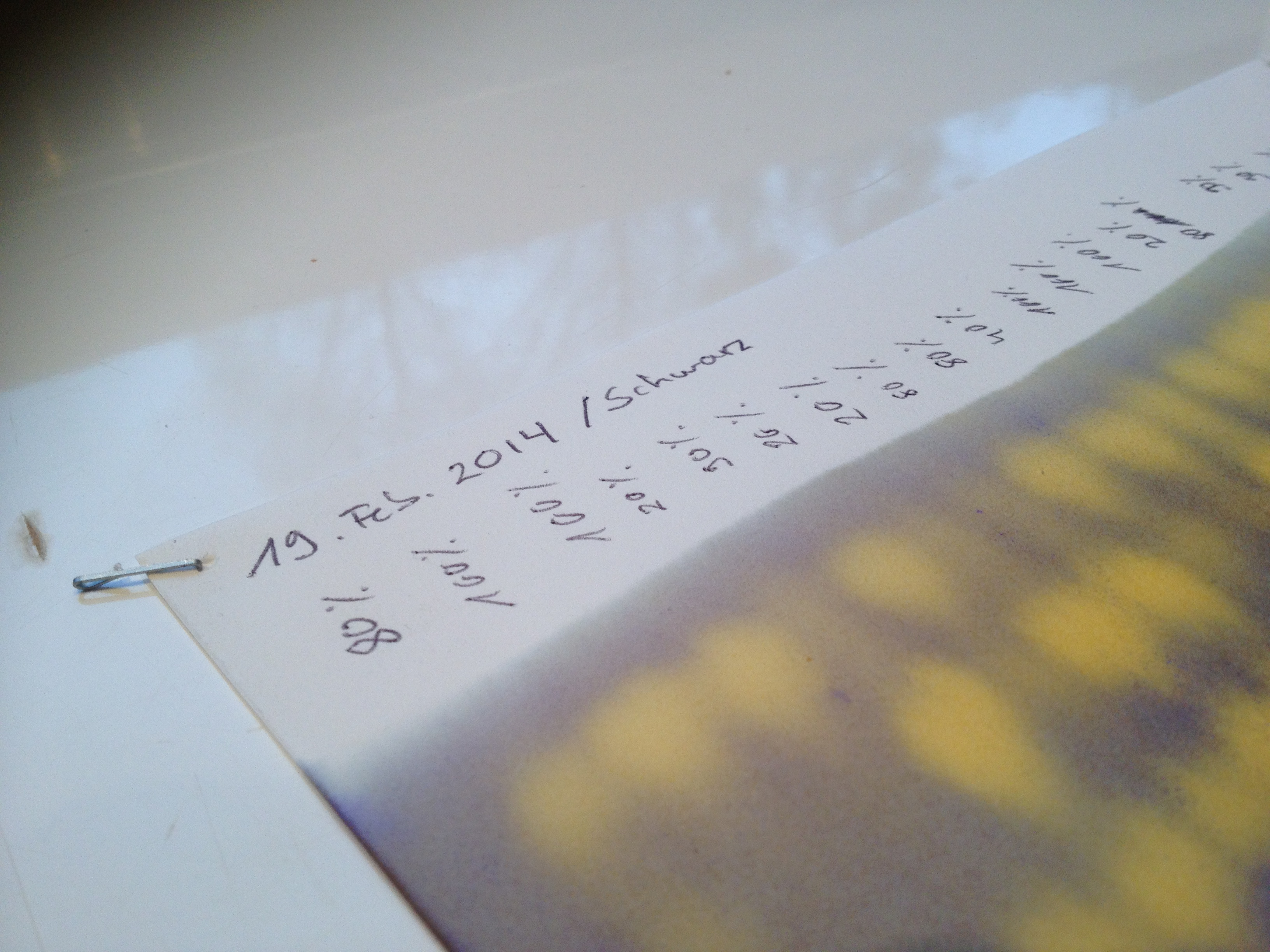 Auftragung der Weinproben auf das Fliespapier.