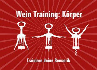 Wein Sensorik Körper
